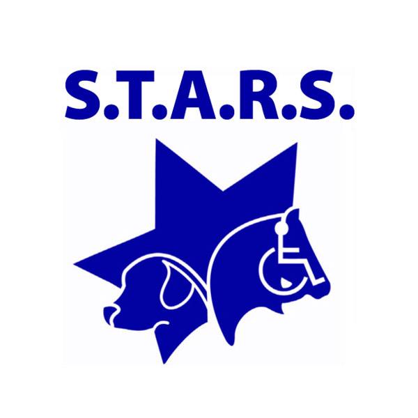 STARS Logo_old